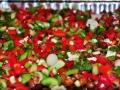 Black-Gram-Tofu-Salad2
